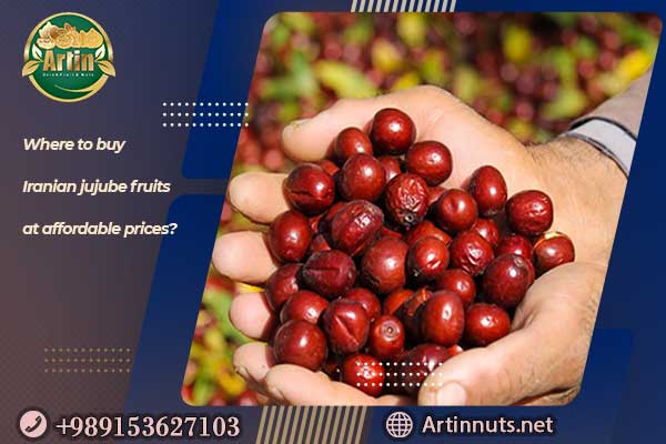 Iranian jujube fruit Price