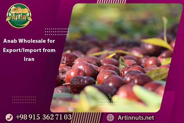 Anab Wholesale