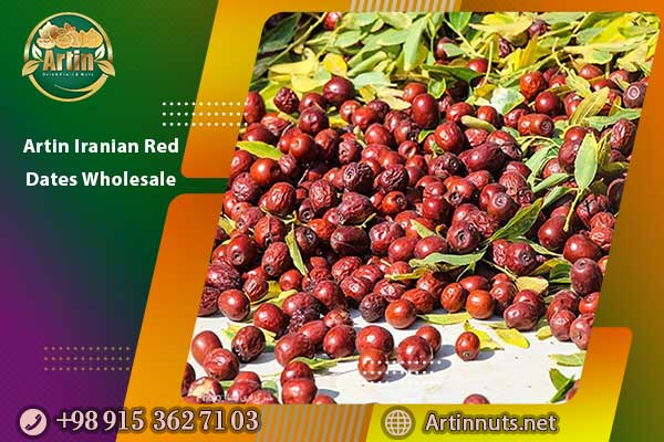Artin Iranian Red Dates Wholesale