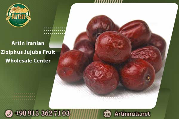 Artin Iranian Ziziphus Jujuba Fruit Wholesale Center