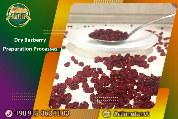 Dry Barberry Preparation Processes