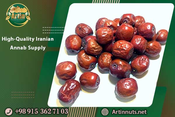 High-Quality Iranian Annab Supply