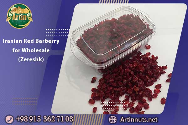 Iranian Red Barberry for Wholesale (Zereshk)