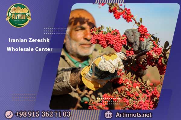 Iranian Zereshk Wholesale Center
