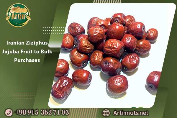 Iranian Ziziphus Jujuba Fruit