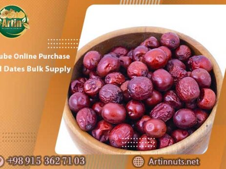 Jujube Online Purchase