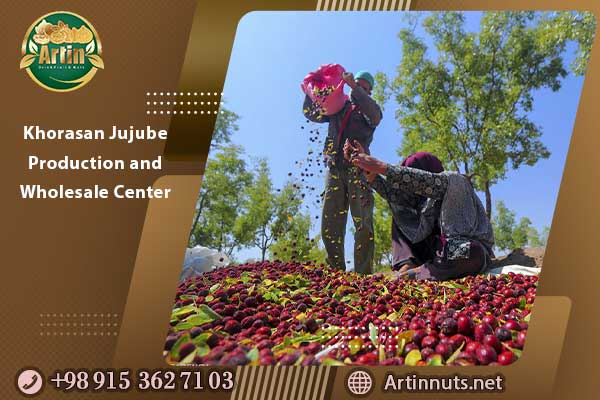 Khorasan Jujube Production and Wholesale Center