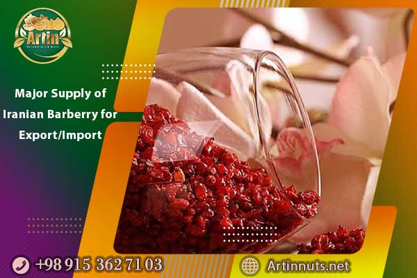 Major Supply of Iranian Barberry for Export/Import