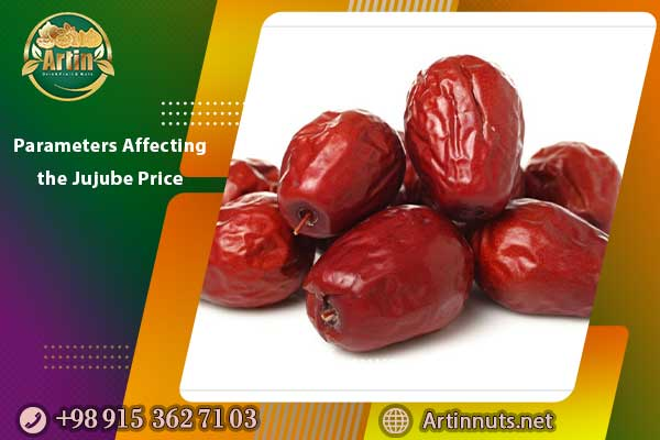 Parameters Affecting the Jujube Price