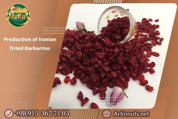 Production of Iranian Dried Barberries