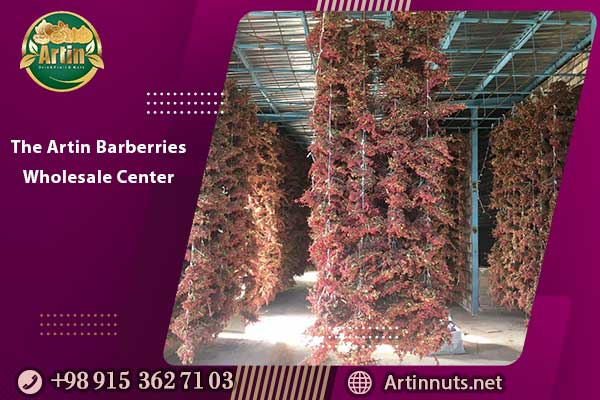 The Artin Barberries Wholesale Center