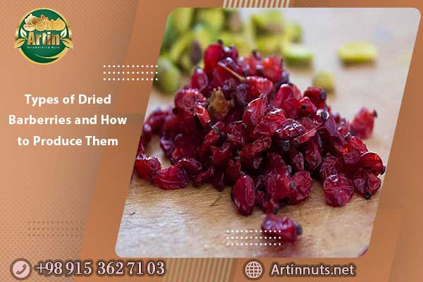 Types of Dried Barberries and How to Produce Them