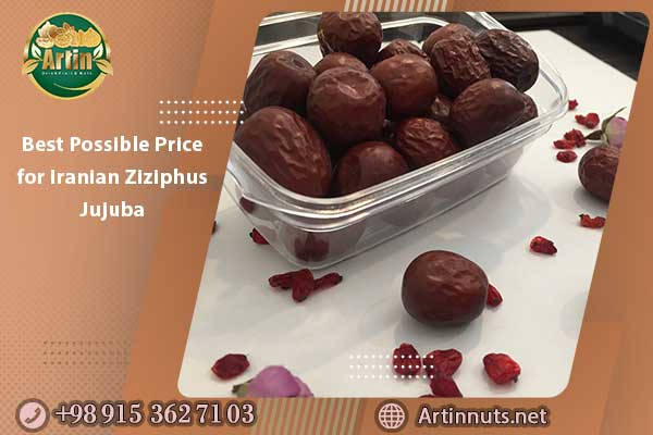 Best Possible Price for Iranian Ziziphus Jujuba