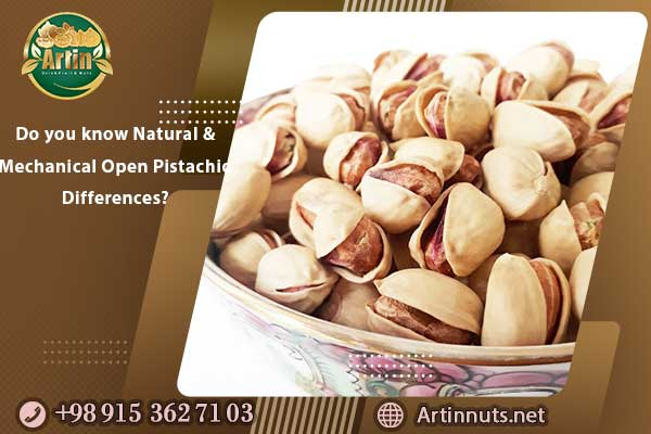 Do you know Natural and Mechanical Open Pistachio Differences?