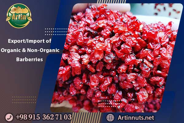 Export/Import of Organic and Non-Organic Barberries
