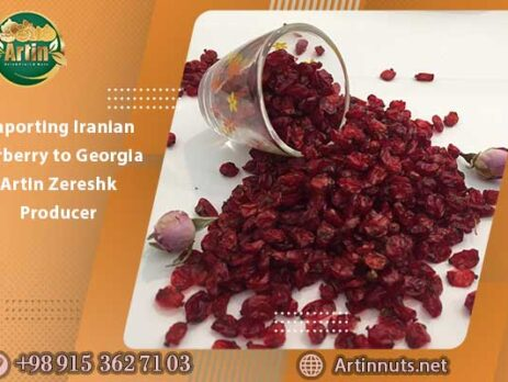 Importing Iranian Barberry to Georgia | Artin Zereshk Producer