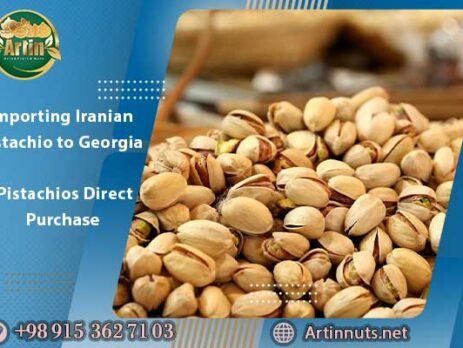 Importing Iranian Pistachio to Georgia | Pistachios Direct Purchase