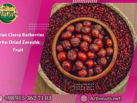 Iranian Classy Barberries | Artin Dried Zereshk Fruit