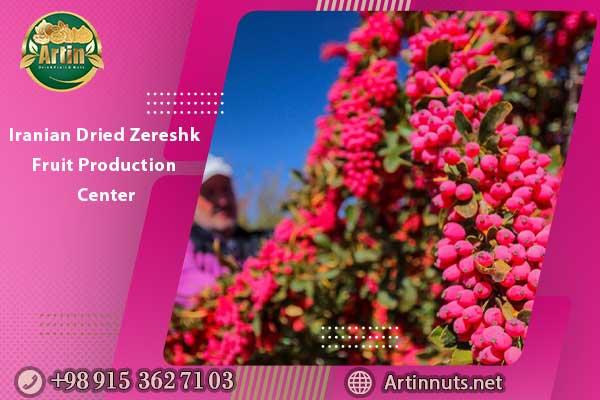 Iranian Dried Zereshk Fruit Production Center