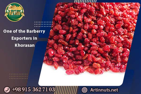 One of the Barberry Exporters in Khorasan