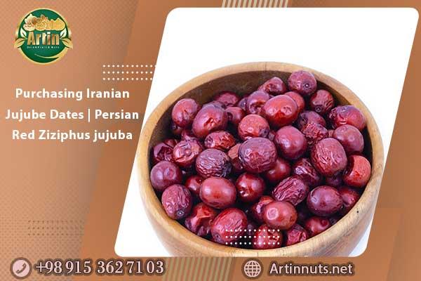 Purchasing Iranian Jujube Dates | Persian Red Ziziphus jujuba