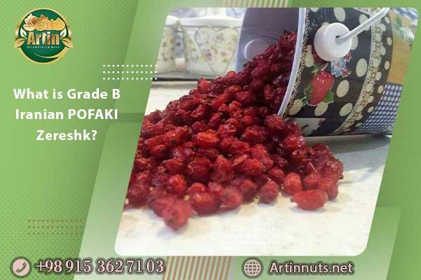 What is Grade B Iranian POFAKI Zereshk?