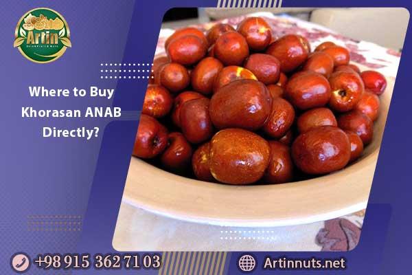 Where to Buy Khorasan ANAB Directly?