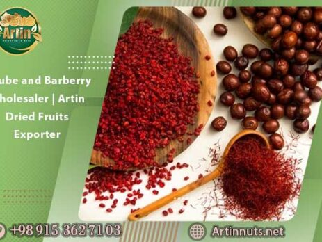 Jujube and Barberry Wholesaler | Artin Dried Fruits Exporter