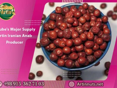 Jujube's Major Supply | Artin Iranian Anab Producer