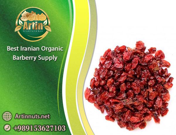 Iranian Organic Barberry Supply