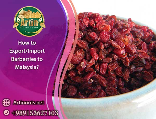 Import Barberries to Malaysia