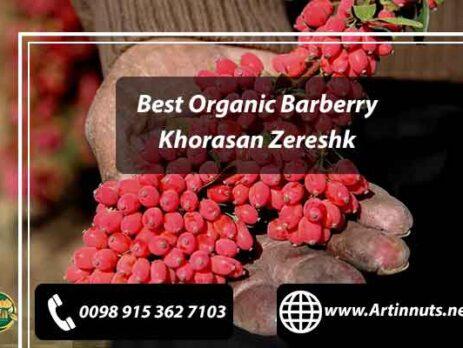 Best Organic Barberry