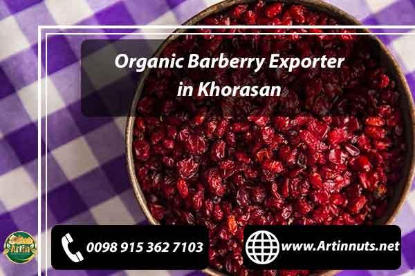 Organic Barberry Exporter