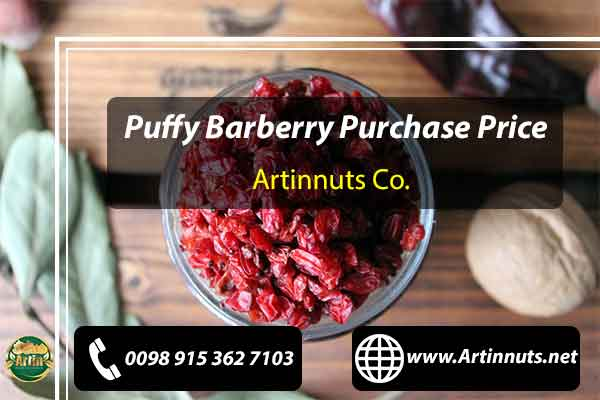 Puffy Barberry Purchase Price