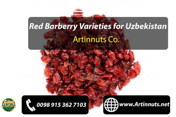 Red Barberry Varieties