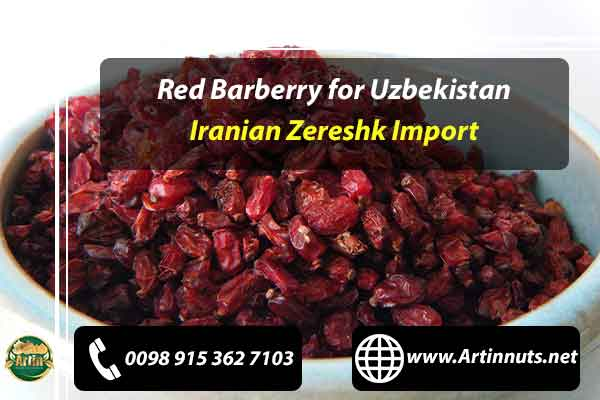 Red Barberry for Uzbekistan