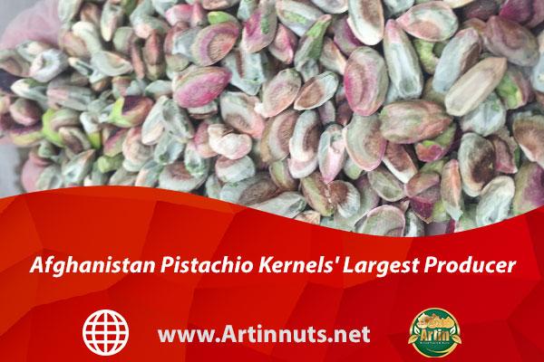 Afghanistan Pistachio Kernels' Largest Producer
