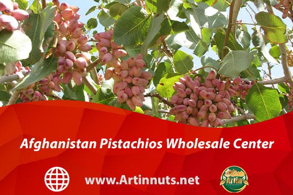 Afghanistan Pistachios Wholesale Center