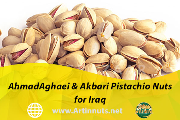 AhmadAghaei & Akbari Pistachio Nuts for Iraq