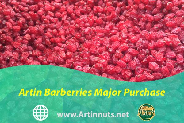 Artin Barberries Major Purchase