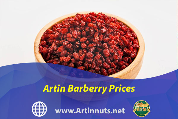 Artin Barberry Prices