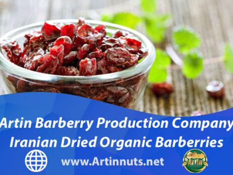 Artin Barberry Production Company | Iranian Dried Organic Barberries