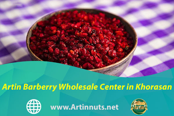 Artin Barberry Wholesale Center in Khorasan