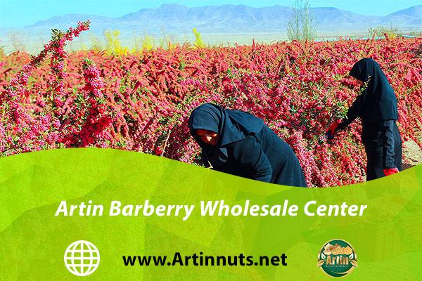 Artin Barberry Wholesale Center