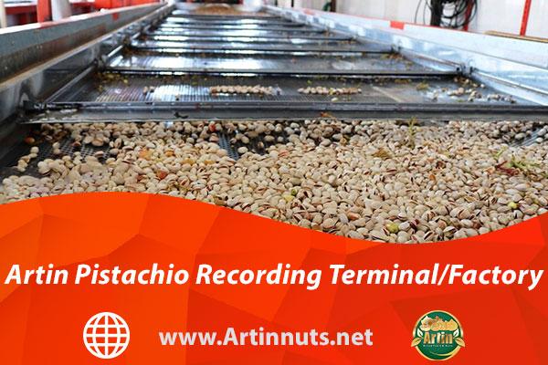 Artin Pistachio Recording Terminal/Factory