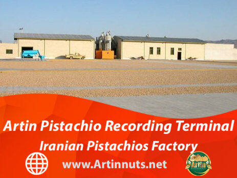 Artin Pistachio Recording Terminal | Iranian Pistachios Factory