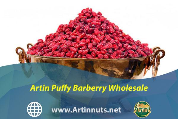 Artin Puffy Barberry Wholesale