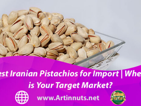 Best Iranian Pistachios for Import | Where is Your Target Market?