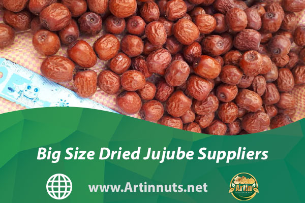 Big Size Dried Jujube Suppliers