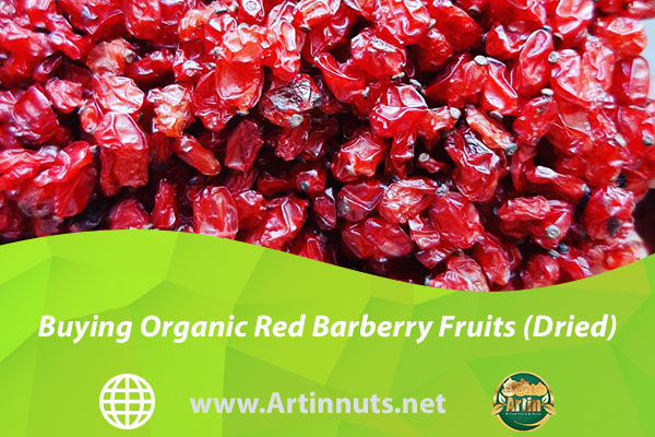 Buying Organic Red Barberry Fruits (Dried)